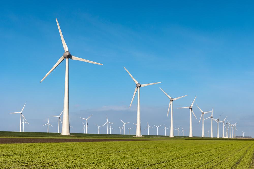 Investera i förnybara energikällor!